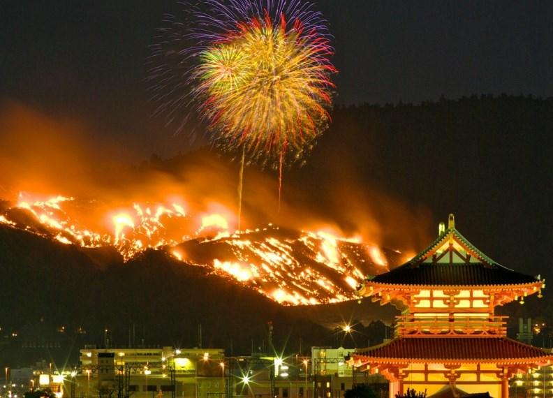Vakakusa Japan Nara