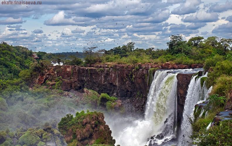 Vogopad Iguazu Argentina Ekaterina Isaeva