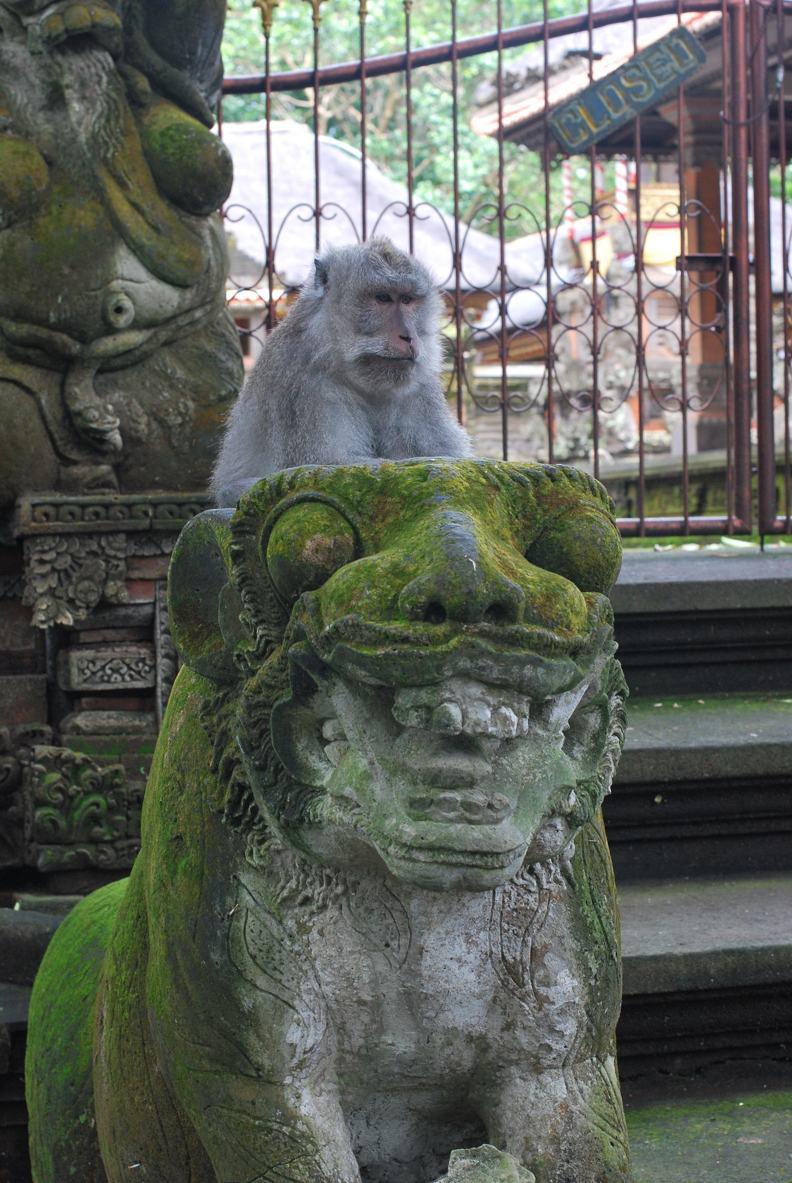 Убуд Статуи и обезьяны