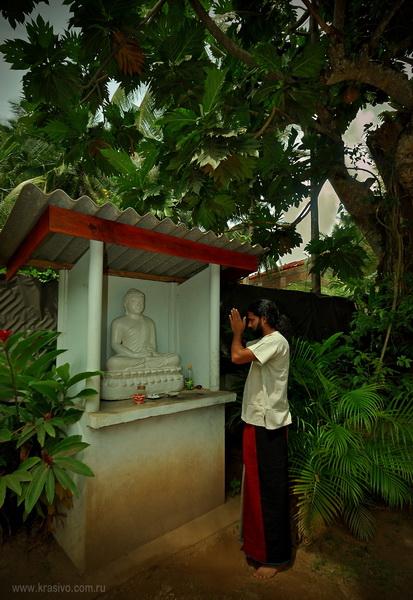 """Ритуальное место для буддистов, типа """"Домик Духов"""""""